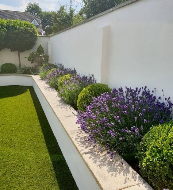 Fence Landscaping Ideas: Modern Earthy Decor