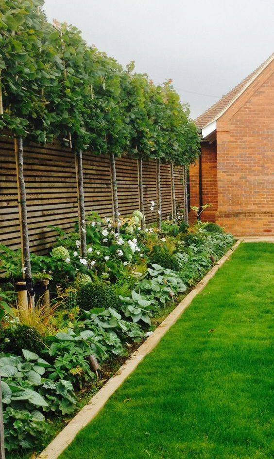 Fence Landscaping Ideas: Stunning Green Decor