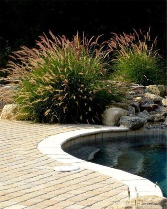 Swimming Pool Landscaping: Simple Earthy Decor