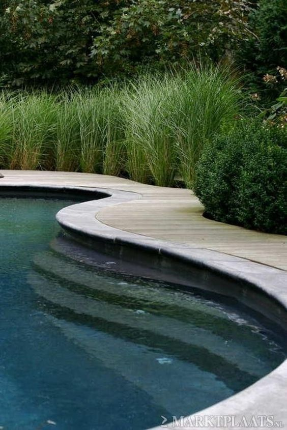 Swimming Pool Landscaping: Cozy Private Decor