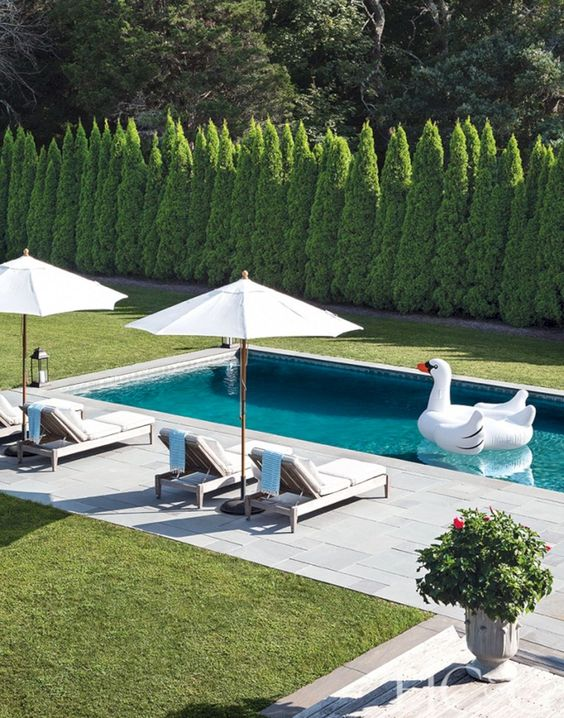 Swimming Pool Landscaping 7