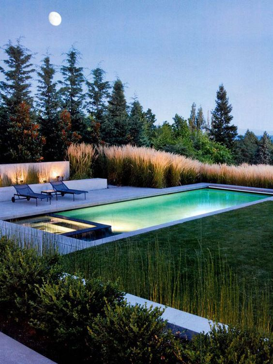 Swimming Pool Landscaping 8