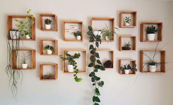 living room plant ideas 19