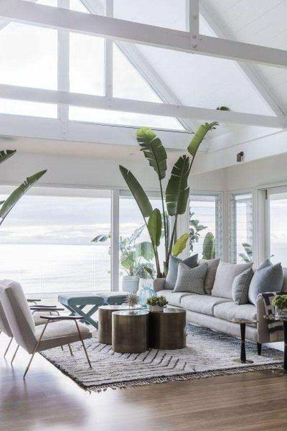 living room plant ideas 8