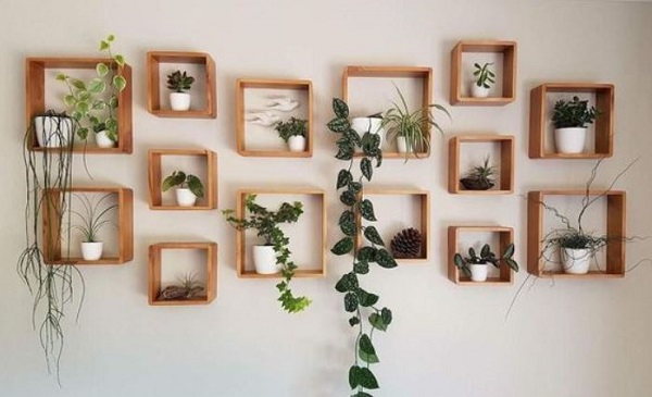living room plant ideas feature