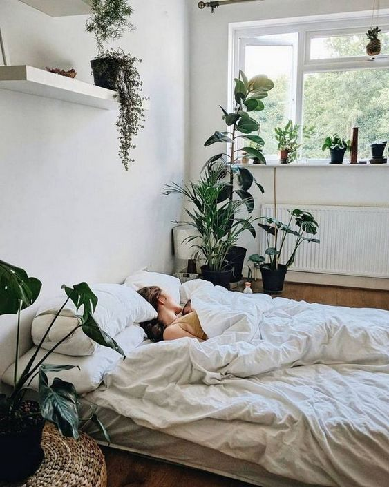 Bedroom Plants Ideas 12