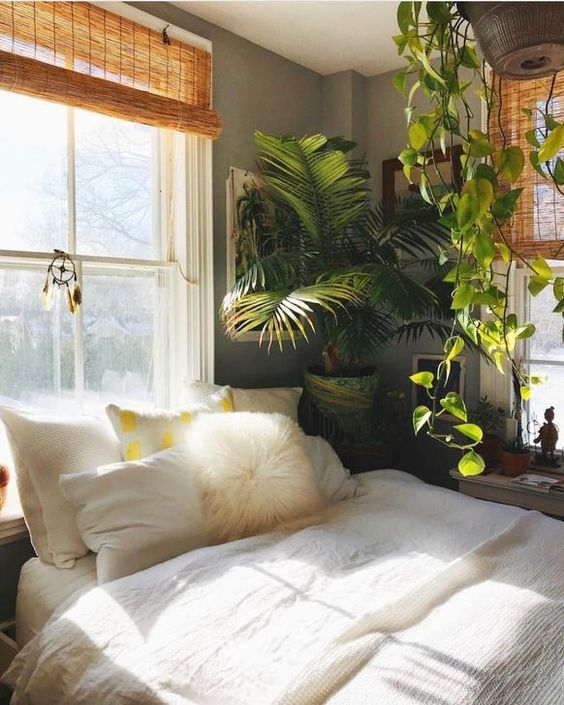Bedroom Plants Ideas 13
