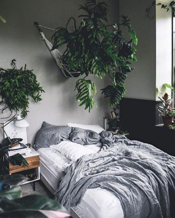 Bedroom Plants Ideas 14