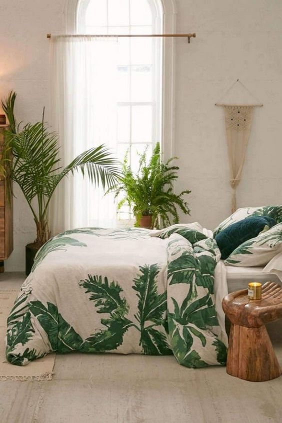 Bedroom Plants Ideas: Simple Catchy Decor