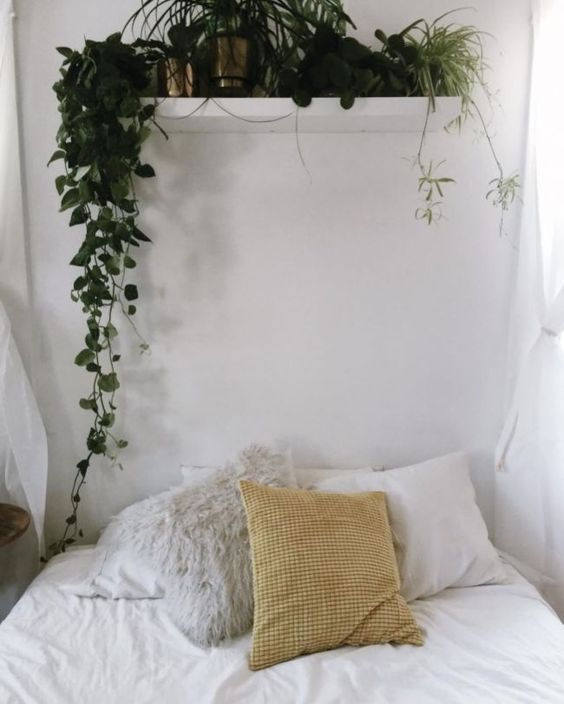 Bedroom Plants Ideas 22