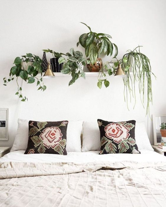 Bedroom Plants Ideas: Simply Chic Decor
