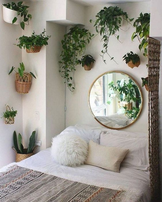 Bedroom Plants Ideas: Catchy Minimalist Decor