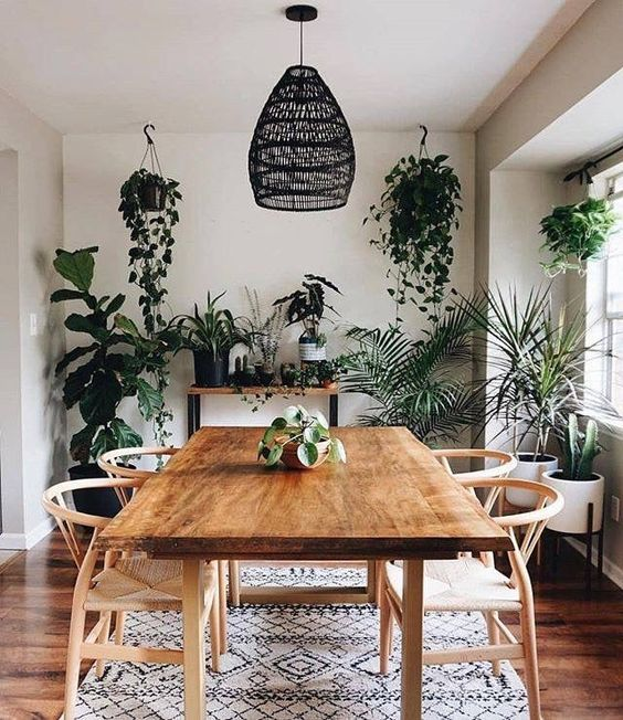 Green Dining Room Ideas: Cozy Earthy Decor