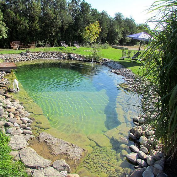 Natural Swimming Pool Ideas: Gorgeous Rocky Pool