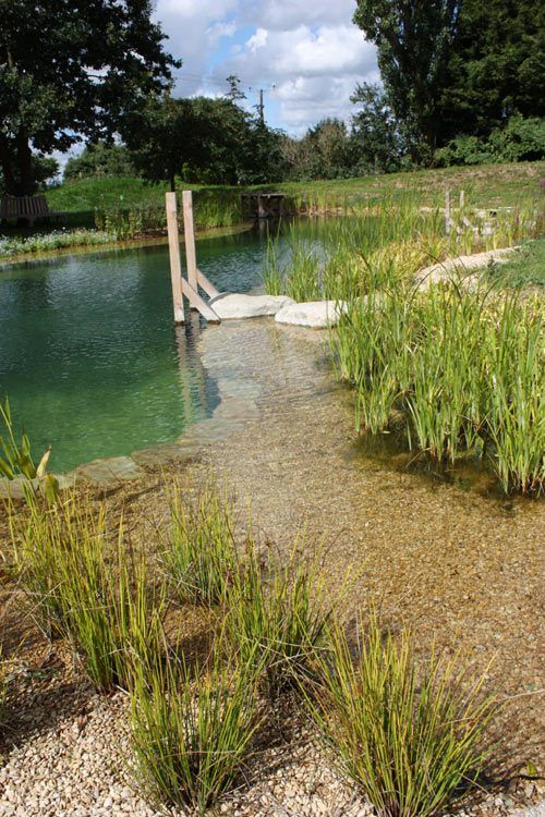 Natural Swimming Pool Ideas 10