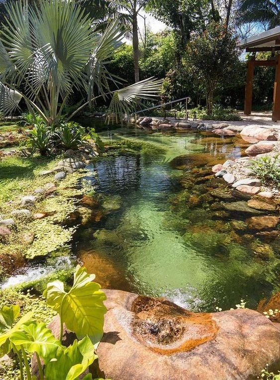 Natural Swimming Pool Ideas 16