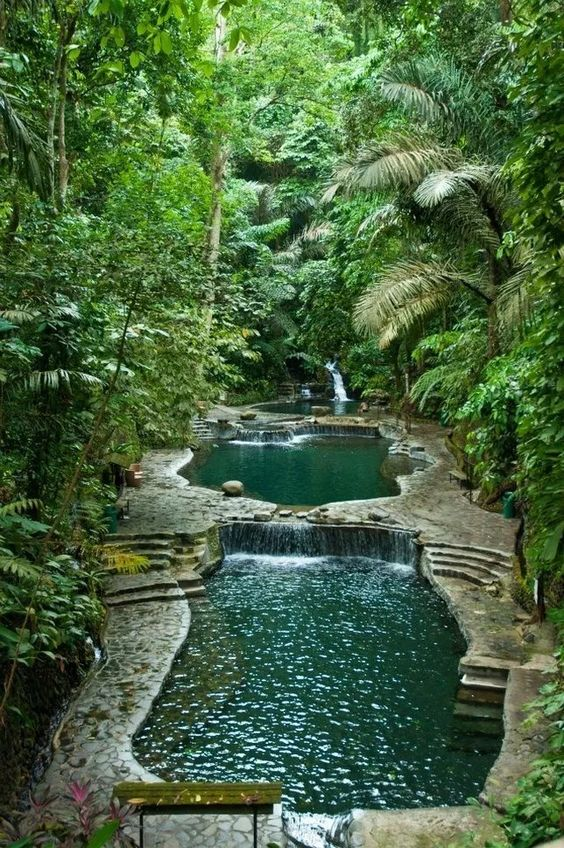Natural Swimming Pool Ideas 17