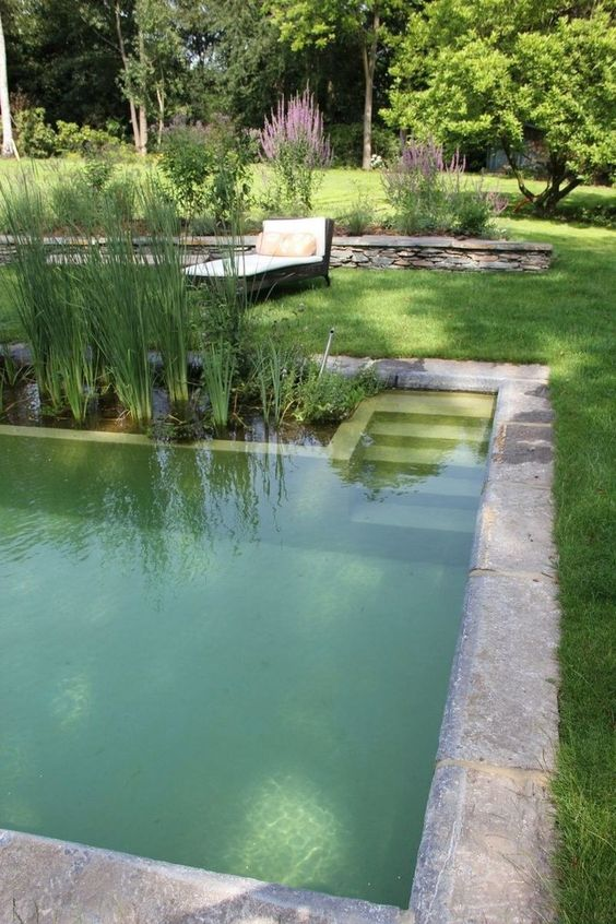 Natural Swimming Pool Ideas: Minimalist Earthy Pool