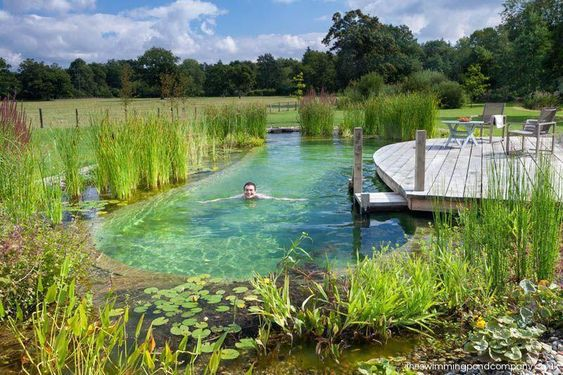 Natural Swimming Pool Ideas 20