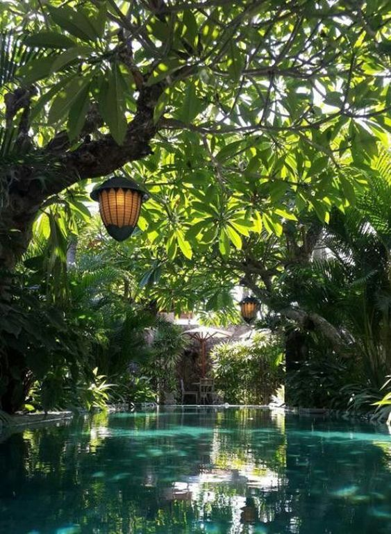 Natural Swimming Pool Ideas: Captivating Jungle Pool