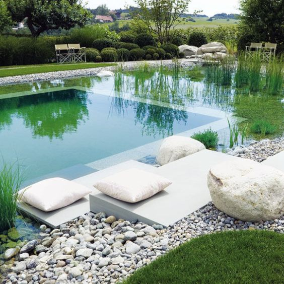 Natural Swimming Pool Ideas: Elegant Modern Pool