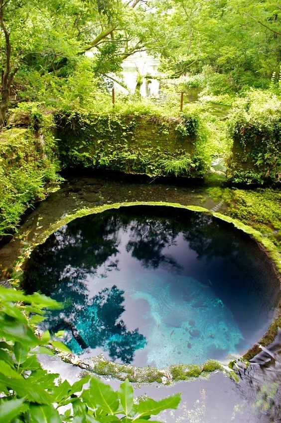 Natural Swimming Pool Ideas 8