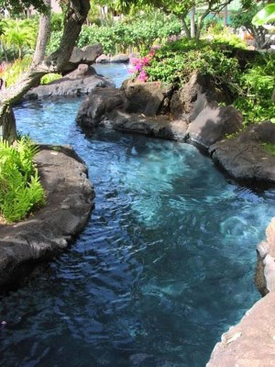 Natural Swimming Pool Ideas 9