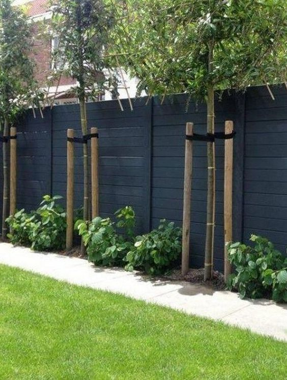 Backyard Fence Ideas: Elegant Minimalist Design