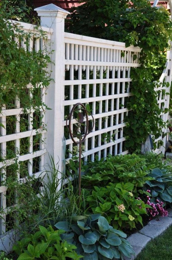 Backyard Fence Ideas: Catchy Earthy Design