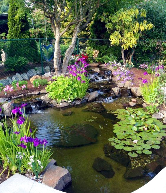 Backyard Pond Ideas: Catchy Earthy Decor