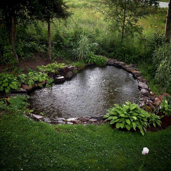Backyard Pond Ideas 11