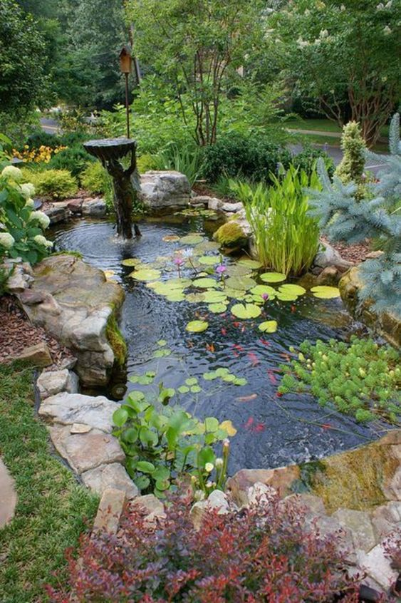 Backyard Pond Ideas 12