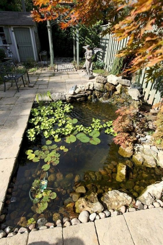 Backyard Pond Ideas 16