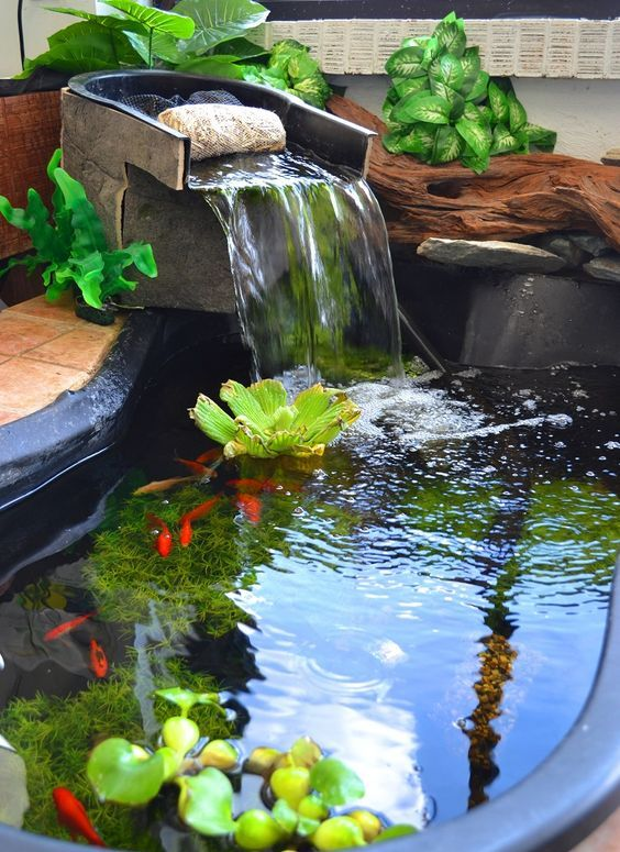 Backyard Pond Ideas: Simple Catchy Pond