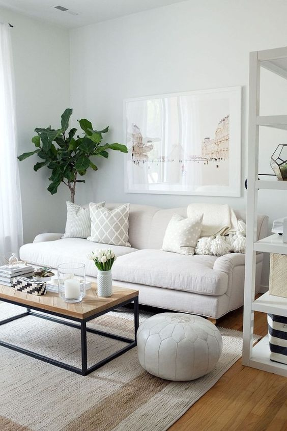 Neutral Living Room Ideas: Simple Earthy Decor