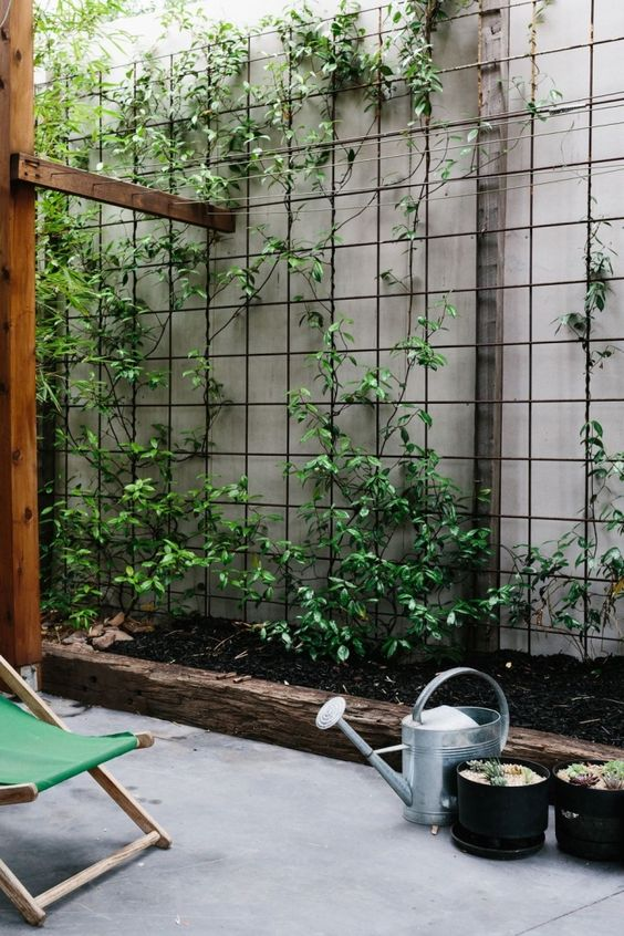Backyard Landscaping Ideas: Simple Wire Wall Grid